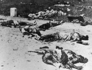 Victims of the Deir-Yasin massacre in 1948